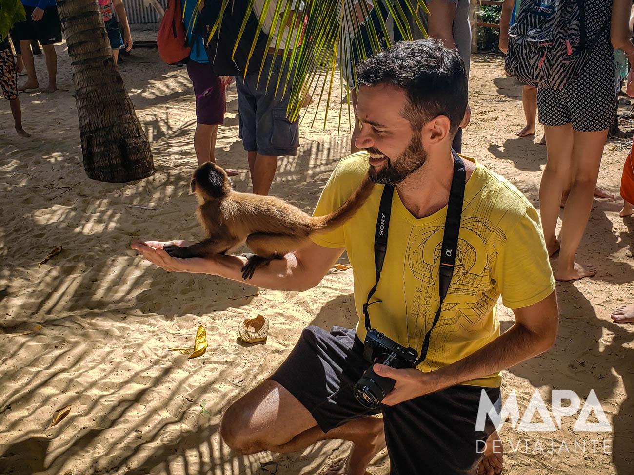 Vassouras Ilha dos Macacos Rio Preguiças