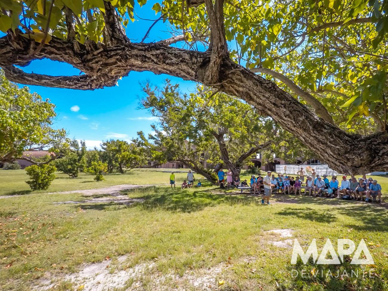 Dry Tortuga Key West Mapa de Viajante