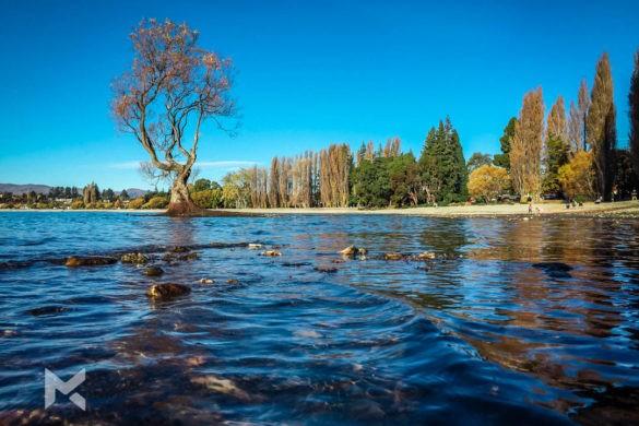 O que fazer Roteiro pela Nova Zelândia