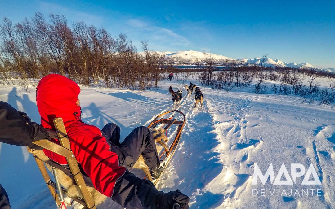 Passeio de Trenó com Husky em Tromso