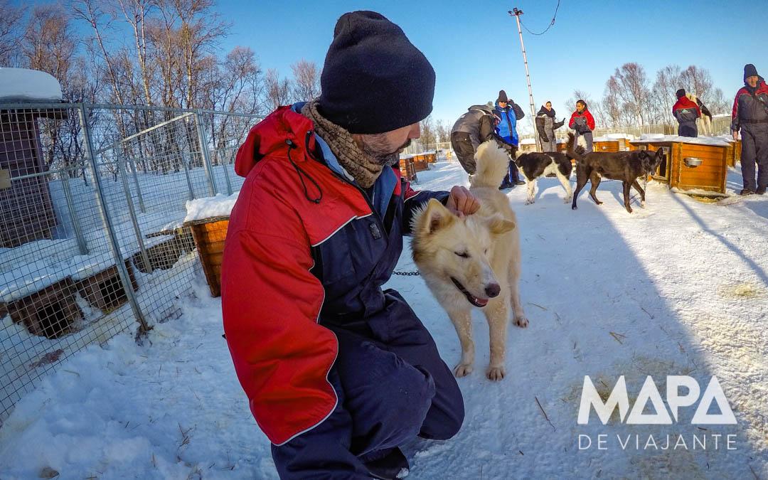 Canil de Huskies em Tromso na Noruega