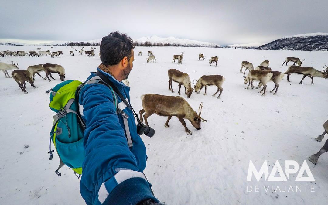 O que fazer em tromso Noruega: Passeio Cultura Sami Noruega